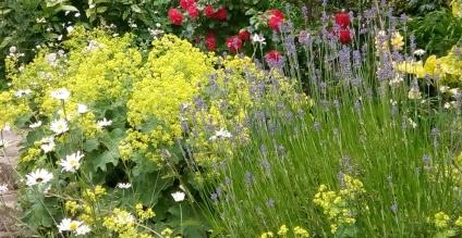 Flower Show Season